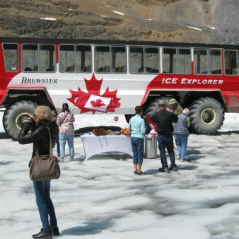 Columbia Icefield Tour including the Glacier Skywalk from Banff