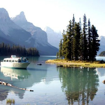 5.5 Hour Jasper Wildlife, Waterfalls Tour with Maligne Lake Cruise from Jasper