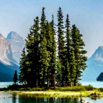 maligne lake cruise tickets in jasper